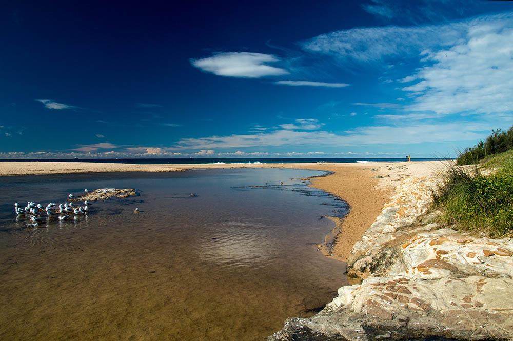азов море пляж песок