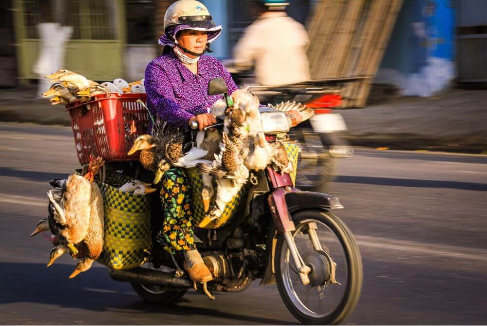вьетнам что нужно знать туристу про опасности